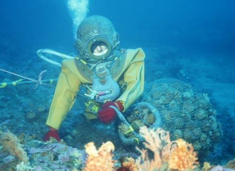 南部もぐり 潜水夫