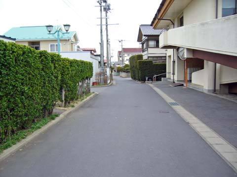 洋野町役場種市庁舎裏の道路