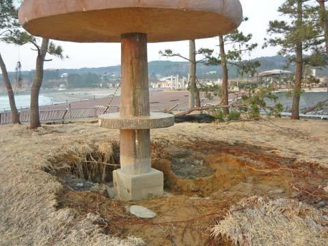 津波後の海浜公園