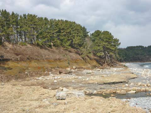 和座川の河口