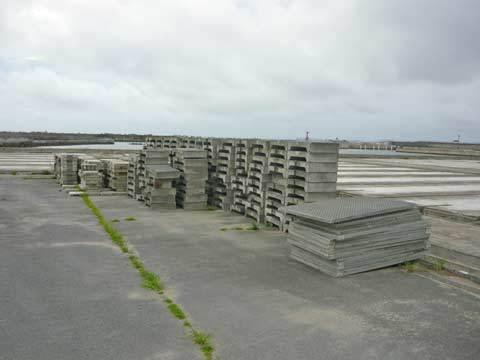 ウニ栽培センター