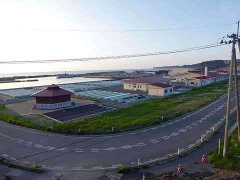 栽培センター