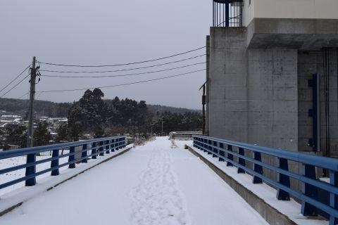 2017-2-5-1.jpg