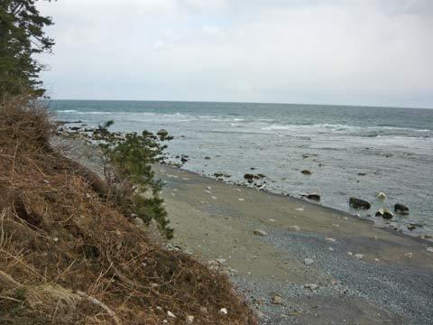 戸類家の海岸