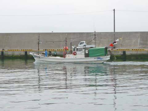 八木南漁港の漁船