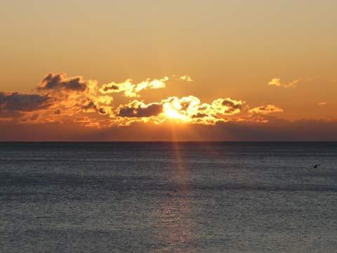 三陸海岸の朝日