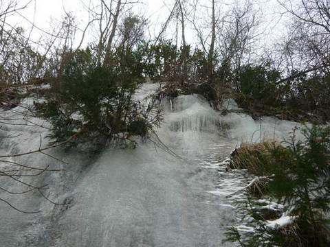 2011-1-25-5.jpg
