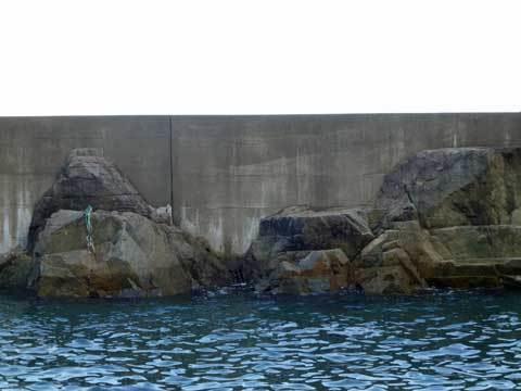 高家漁港の堤防