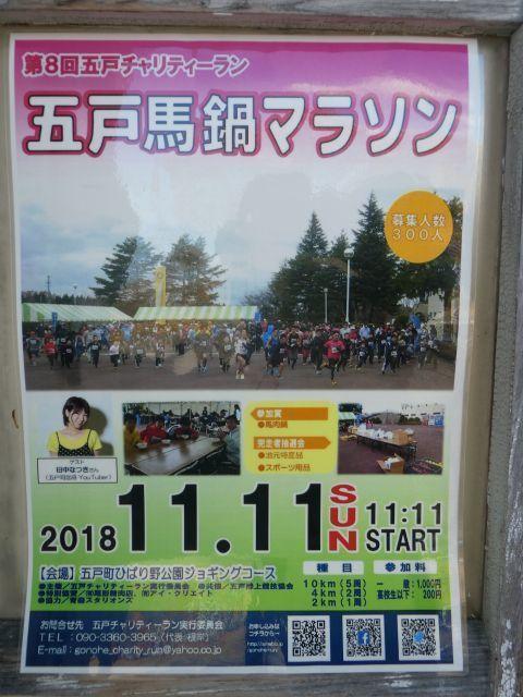 2018-11-15-1.jpg